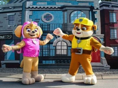Movie Park Paw Patrol Figuren Skye und Rubble